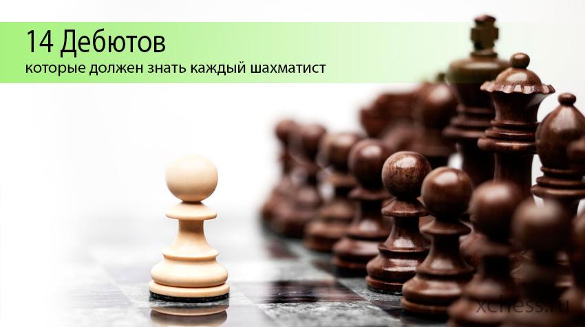 14 Дебютов, которые  должен знать каждый шахматист