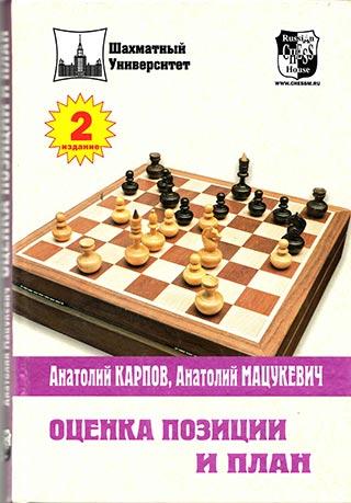 Оценка позиции и план (2007)