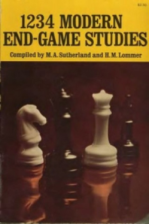 Modern End - Game Studies