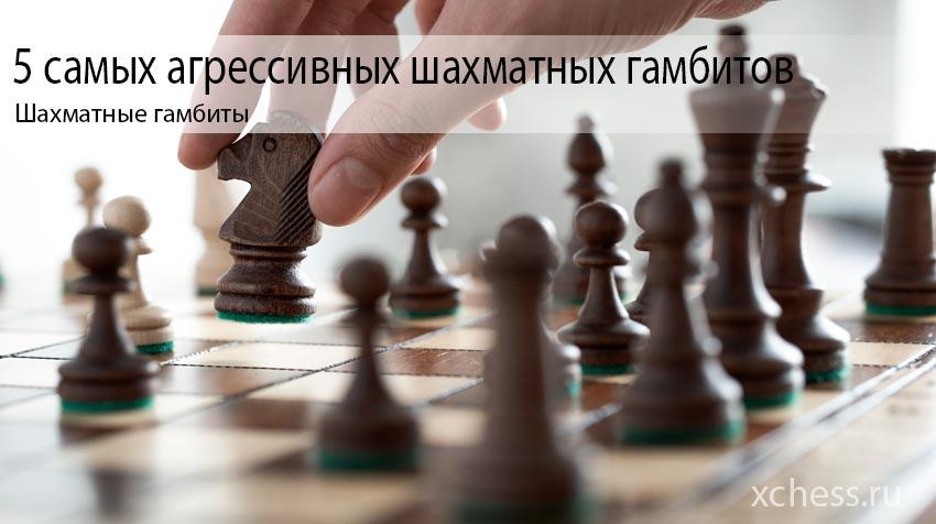 5 самых агрессивных шахматных гамбитов
