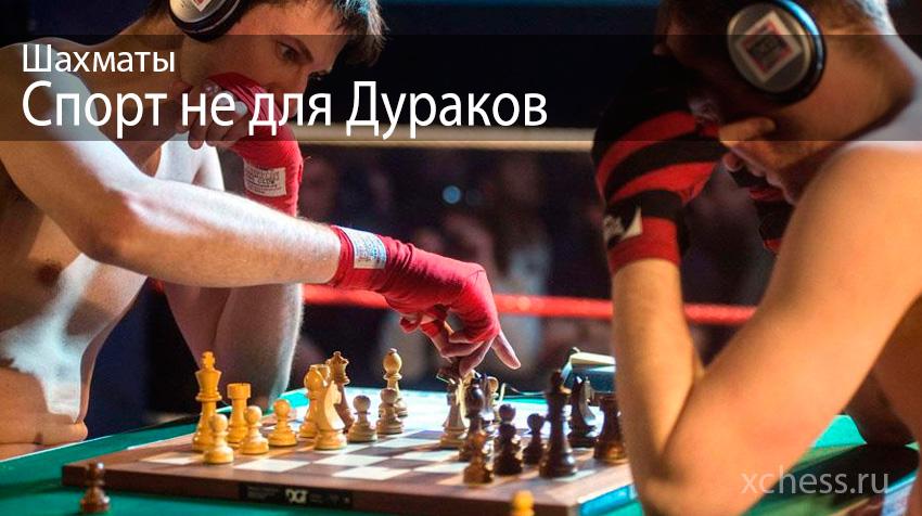 Шахматы - спорт не для дураков