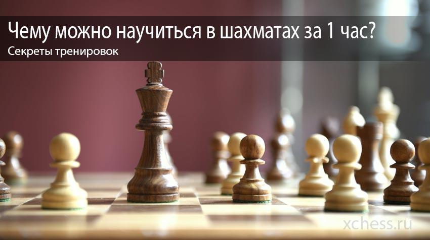 Чему можно научиться в шахматах за 1 час