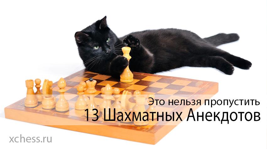 13 Шахматных Анекдотов, которые нельзя пропустить