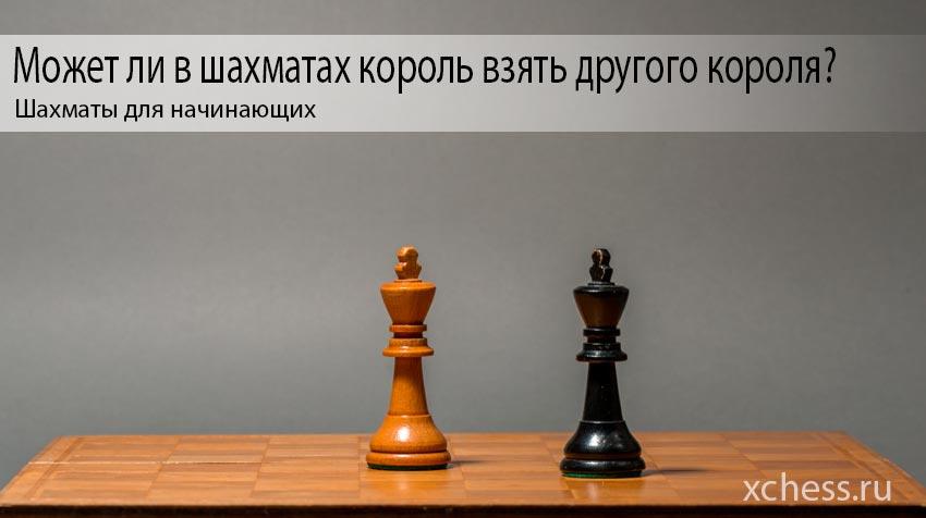 Может ли в шахматах король взять другого короля?