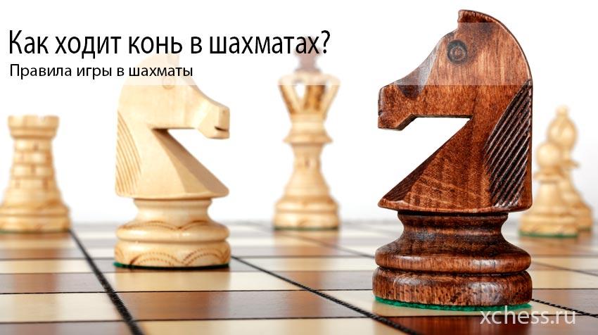 Как ходит конь в шахматах?