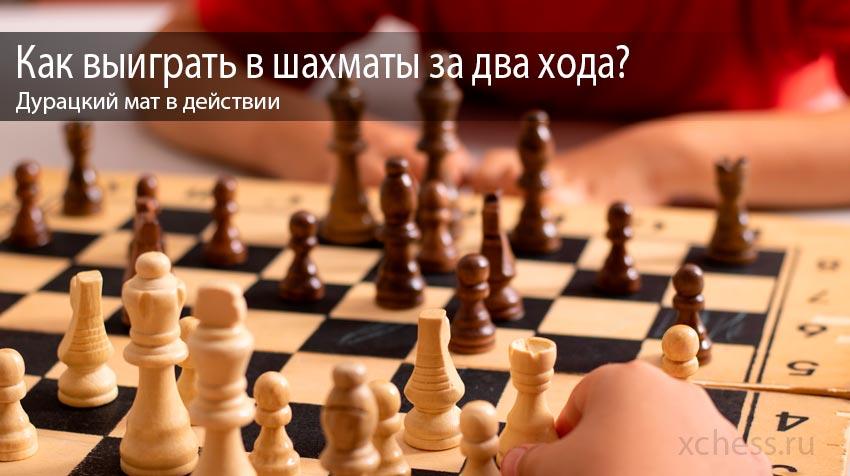 Как выиграть в шахматы за два хода? Дурацкий мат в действии
