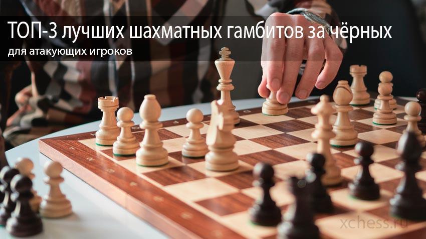 ТОП-3 лучших шахматных гамбитов за чёрных для атакующих игроков